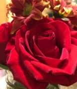 Flowers_Vase 2